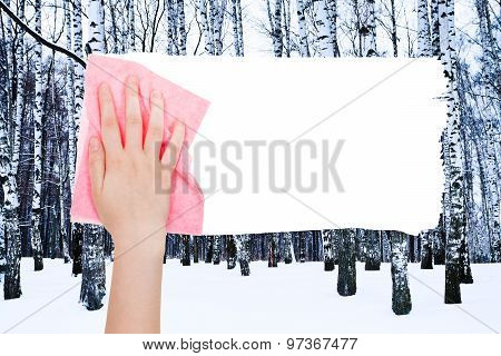 Hand Deletes Winter Birch Trees By Pink Rag