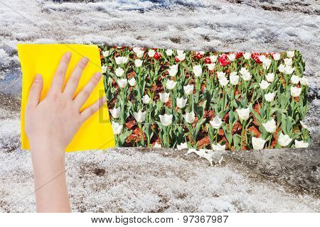 Hand Deletes Old Snow By Yellow Cloth