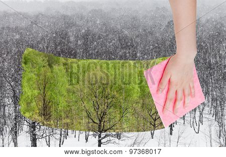 Hand Deletes Snowing Over Winter Woods By Cloth