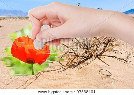 Hand Deletes Dry Sand Desert By Rubber Eraser