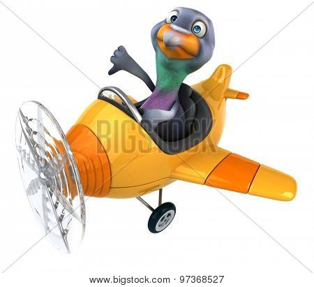 Fun pigeon