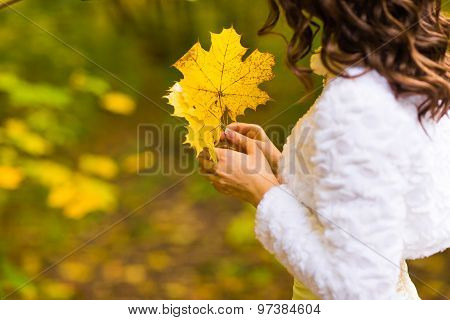 woman holding a maple autumn leaves
