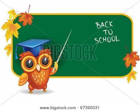 Owl in graduation cap in front of school chalk board