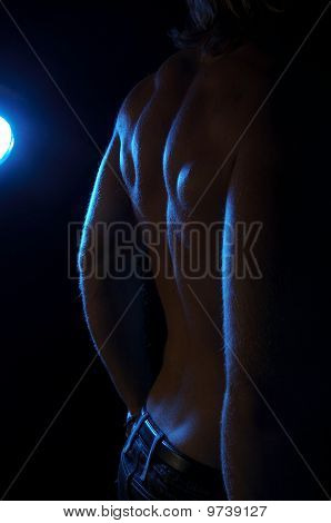 a muscular male's back in shadows - bodybuilder
