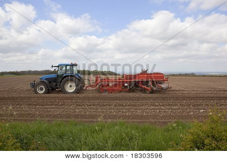 Preparing To Plant Potatoes