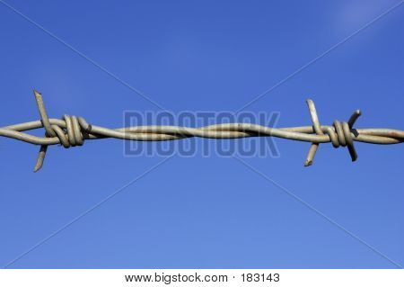 Barbed Wire Fence Detail
