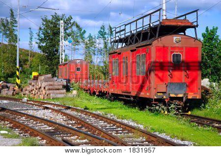 Tren rojo de carga en el paisaje de montañas