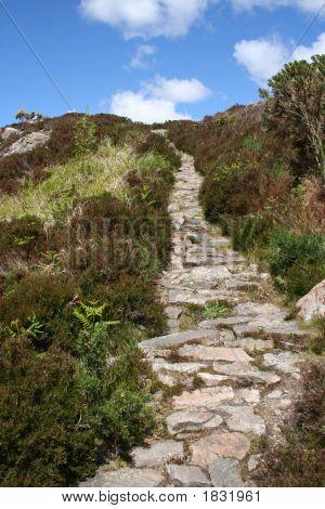 Footpath Leading Uphill