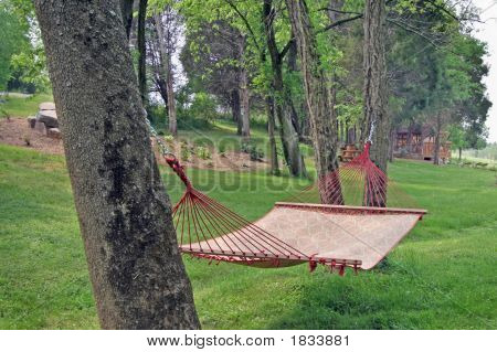 Sleepy Hammock