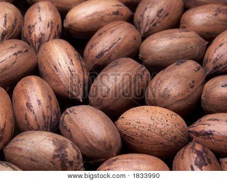 Stock photo : Whole Pecans In The Shell