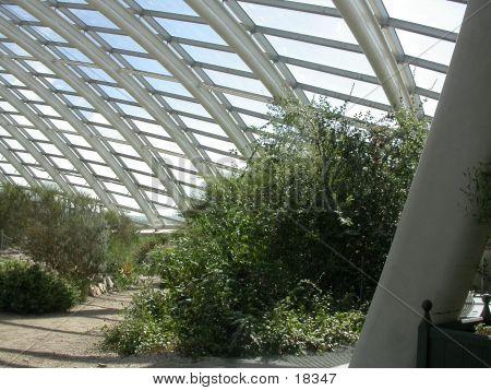 Welsh Botanic Gardens 02