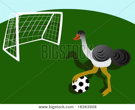 ostrich, playing football