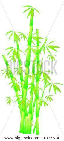 Vector_Bamboo.Eps