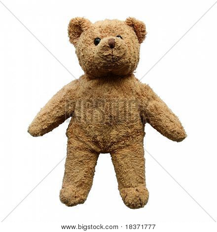 Teddybär, isolated on white background