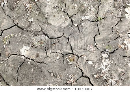 deep cracks on the ground