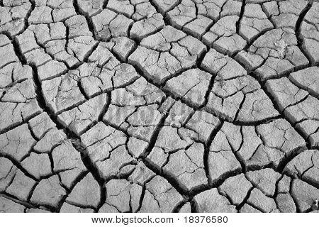 texture of shrinkage cracks BW photo