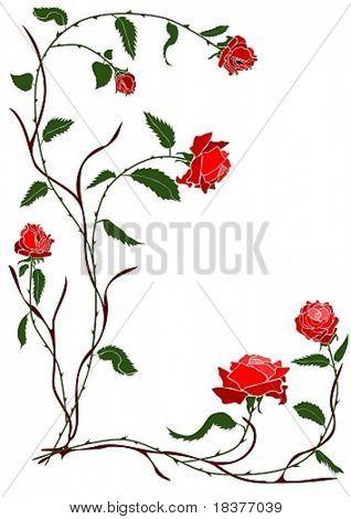 vector - branch red rose vine