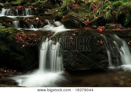 detail of autumn forest waterfall