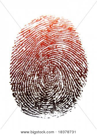 Thumb Print Illustration