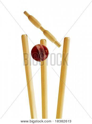 Tocones de Cricket