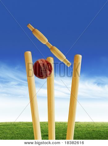 Tocones de Cricket