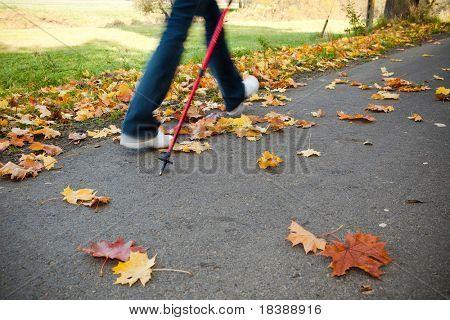 """Nordic walking Rennen auf Herbst Trail-""""Bewegungsunschärfe"""""""