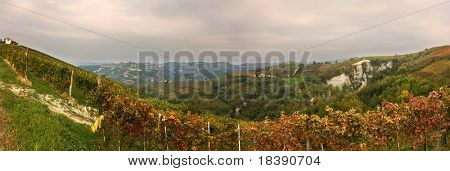 Panoramic view on vineyard in small village Borgomale in northern Italy.