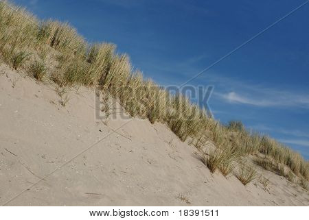 dunes at the northsea beach in holland 1