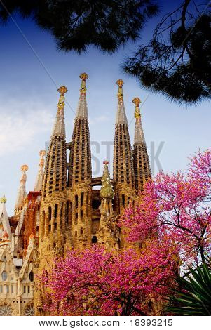La Sagrada Familia in Barcelona with pink spring blossom