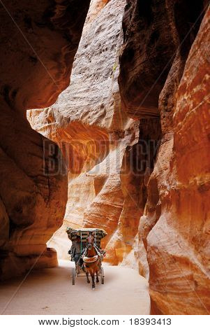 Horse carriage in Siq of world wonder Petra in Jordan