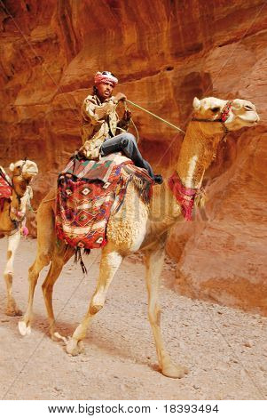 Camel and rider in canyon of Petra, Jordan