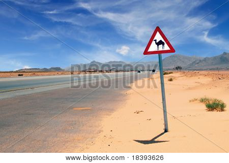 Triangular road sign with warning for crossing camels in Wadi Rum, Jordan