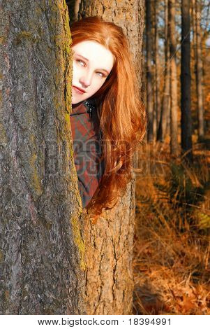 Caucasian girl with long red hair, peeking from behind a tree in an autumn colored forest