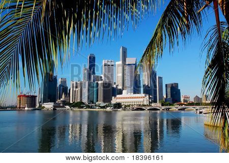 singapore skyline with palm leafs and a clear blue sky