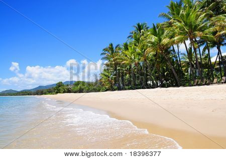 Tropical beach with palm trees at Palm Cove, Australia