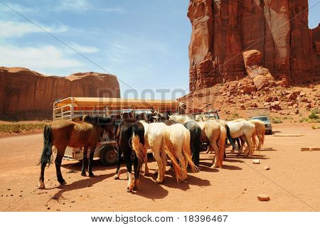 Horses ready to ride in Monument Valley