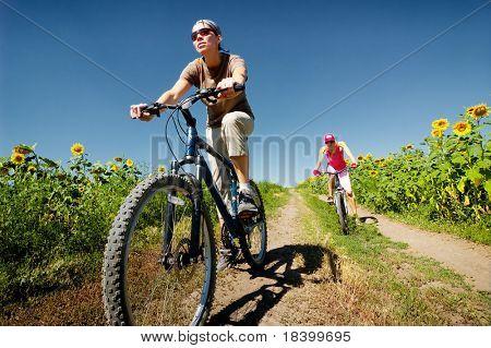 Frauen entspannen Biken auf Sommer Straße
