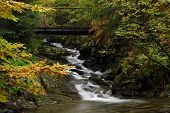 forest waterfall on river Vrazedny - Jesenik mountains - Czech republic