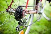 Rear racing bike cassette on the wheel with chain