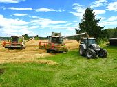 image of hayfield  - two green combine harvesters and tractor harvesting a grain field - JPG