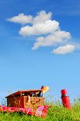 Picnic basket with wine and bread on grass with blue sky and fluffy clouds background