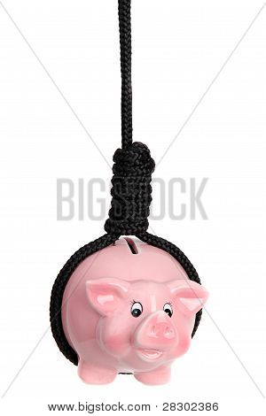 Pink Piggy Bank With Black Gibbet