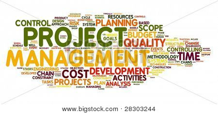 Project management concept in word tag cloud on white background