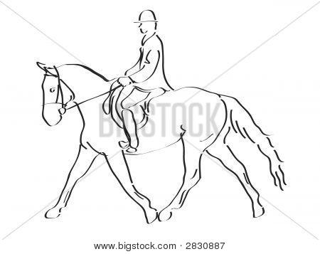 Calligraphic Equestrian