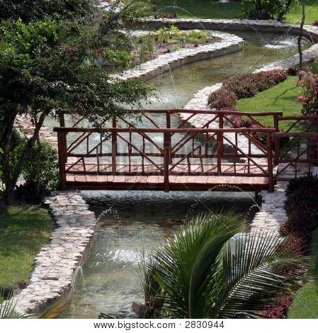 Tropical Garden Bridge