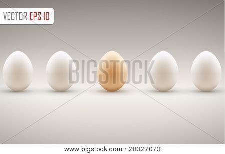 Brown egg concept. Vector illustration