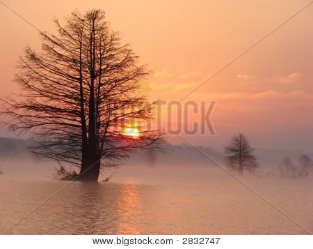 Sunrise On Lake