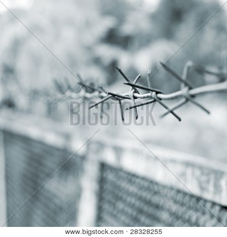 strands of barbed wire against gray background