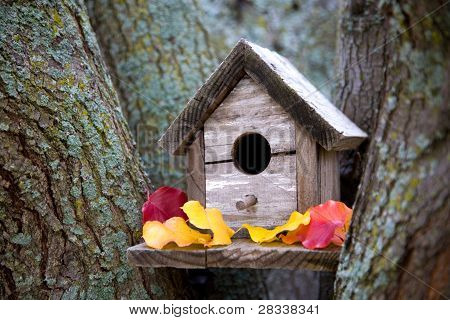 Cozy Birdhouse