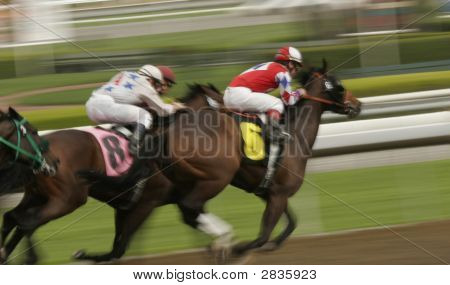 Horse Race Motion Blur
